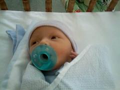 Baby Dan Nichols Picture
